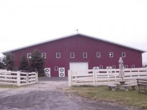 metal horse arena barn